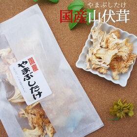 【2袋セット】山伏茸  国産 乾燥