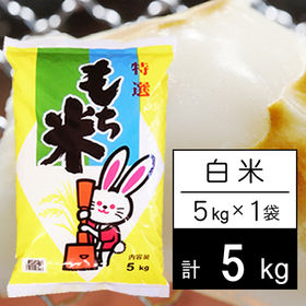 【5kg】 もち米 令和2年産 山形県産 ヒメノモチ 白米5...