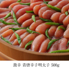 【500g】激辛5辛 青唐辛子明太子(1本物)