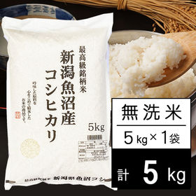 【5kg】 JA十日町 令和2年産 新潟県魚沼産コシヒカリ ...