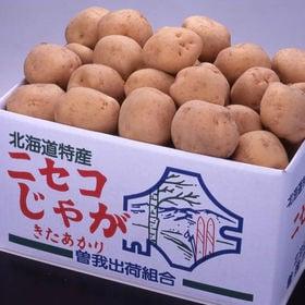 【10kg】北海道ニセコ産きたあかり