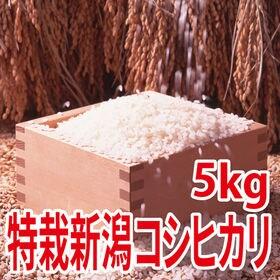 【5kg×1袋】令和2年産 新米 特別栽培米新潟県阿賀野産コ...