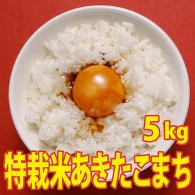 【5kg×1袋】令和2年産 新米 こだわり 特別栽培米秋田県...