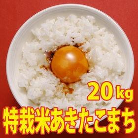 【20kg (5kg×4袋)】令和2年産 新米 こだわり 特...