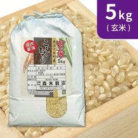 【5kg×1袋】令和2年産 新米 玄米 魚沼十日町産コシヒカ...