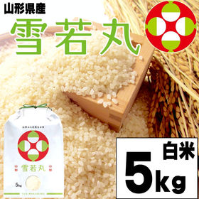 【5kg】令和2年産 新米 山形県産 雪若丸 精米