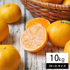 【10kg(中玉2S-2Lサイズ込み)】吉田みかん  (ご家...