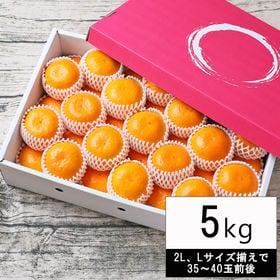 【5kg(2L、Lサイズ揃35-40玉前後・ネット掛化粧箱入...