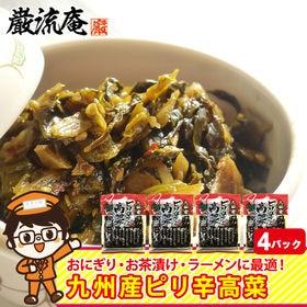 【4パック】高菜漬け からし高菜 辛子高菜 高菜 九州