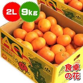 【予約受付】10/25~12/20まで順次出荷【9kg】有田...