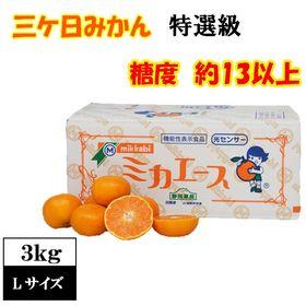 【予約受付】12/10~順次出荷【3kgLサイズ】糖度約13...