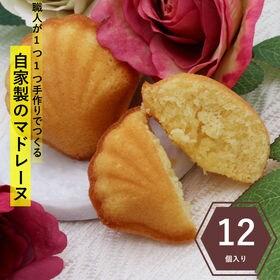【12個入り(1個約35g)】自家製マドレーヌ  プレーン ...