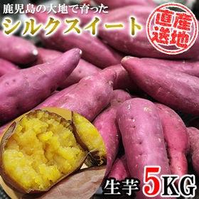 【5kgセット】 鹿児島の大自然で育った「シルクスイート」 ...