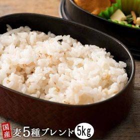 【5kg(500g×10袋)】国産麦5種 (雑穀米・チャック...
