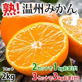 【予約受付】12/7~順次出荷【約2kg(2S~3L)】温州...
