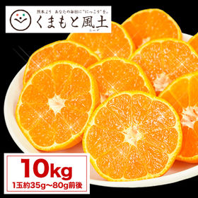 【予約受付】11/27~順次出荷【1セット10kg】熊本みか...