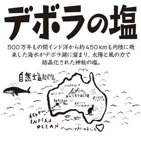 【450グラム×2袋セット】500万年前の塩の結晶・デボラの...