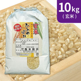【10kg (5kg×2袋)】令和2年産 新米 玄米 岩手県...