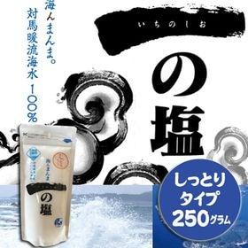 【250グラム×2袋セット】食塩 一の塩(しっとりタイプ)