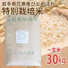 【30kg (30kg×1袋)】令和2年産 新米 玄米 岩手...