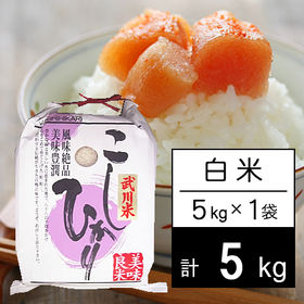 【5kg】 令和2年産 山梨県産 武川米 コシヒカリ 白米 ...