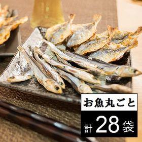 【計28袋/1尾ずつ個包装】贅沢!海鮮おつまみ食べ比べセット