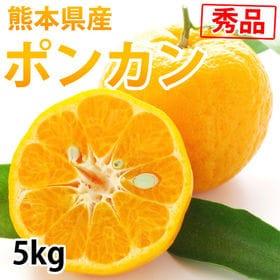 【予約受付】1/25~順次配送【5kg】ポンカン 秀品 熊本...