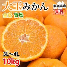 【予約受付】1/25~順次配送【約10kg】 大玉みかん 秀...
