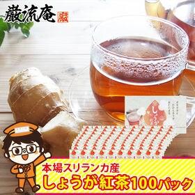 【100パック】ジンジャーティー ティーバッグ(生姜紅茶)