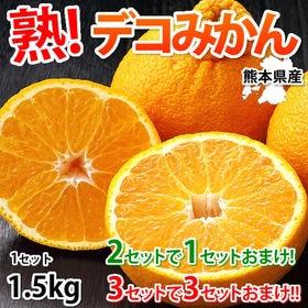 【予約受付】2/16~順次配送【約1.5kg】熊本県産 熟 ...