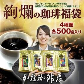 【計2kg(500g×4種)】絢爛の珈琲飲み比べ/カップオブ...
