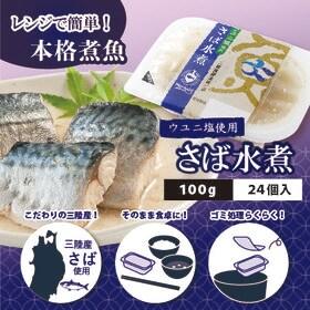 【計2400g(100g×24)】ウユニ塩使用 さば水煮【賞...
