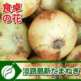 【予約受付】5/10~順次出荷【3kg】淡路島新たまねぎ(M...