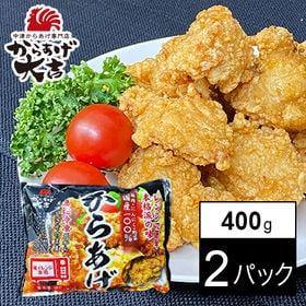 【400g×2パック】【レンジでチン!】中津からあげ ミックス(モモ肉・ムネ肉)