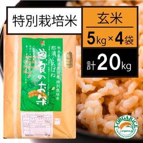 【20kg】特別栽培米 玄米 「曽良のお米(そらのおこめ)」...