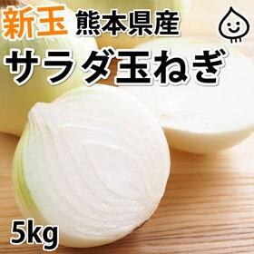 【予約受付】3/25~順次配送【約5kg】熊本県産 サラダ玉...