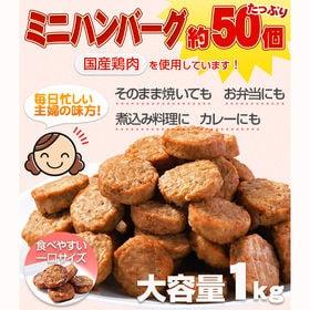 【1kg×4セット】ハンバーグ メガ盛り(計約200個 )一...