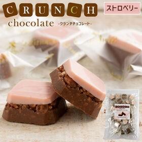【30個入り】クランチチョコレート ストロベリー