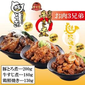 お肉3兄弟-牛すじ煮・鶏照り焼き・豚とろ煮-【各種1袋】