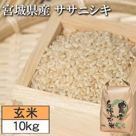 【10kg】令和2年度 宮城県産ササニシキ 玄米