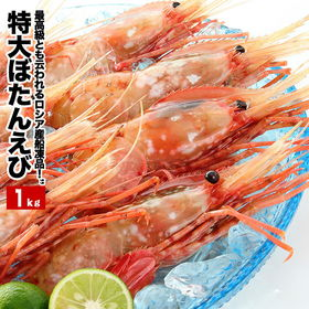 【1kg(16〜20尾前後入)】特大ぼたんえび(ボタン海老)...