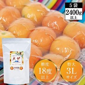 【2400g以上】冷凍フルーツきんかん「大甘(だいかん)」