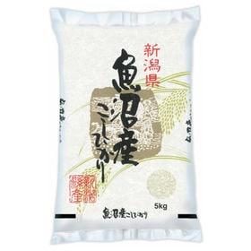 【5kg】≪特Aランク≫令和2年産 新潟県魚沼産コシヒカリ