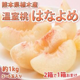 【予約受付】6/3~順次出荷【約1kg(5~6玉】熊本県産 ...