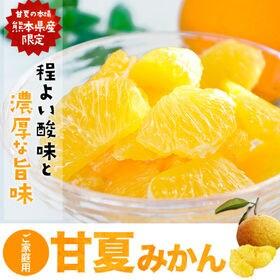 【4.5kg】甘夏みかん 熊本県産限定!※ご家庭用