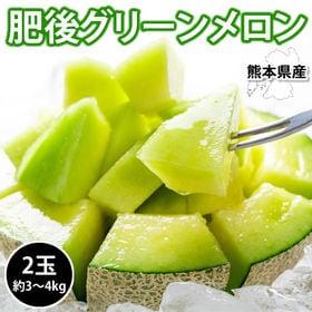 【予約受付】6/2~順次出荷【2玉 約3~4kg】熊本県産肥...