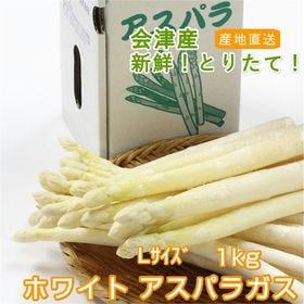 【1kg/Lサイズ】今が旬!!会津産ホワイトアスパラガス