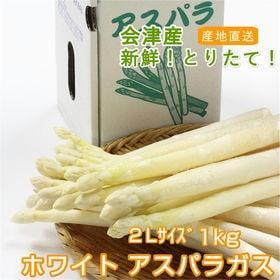 【1kg/2Lサイズ】今が旬!!会津産ホワイトアスパラガス