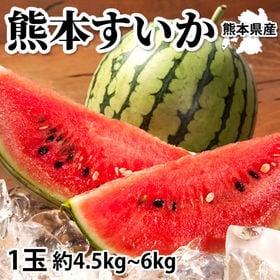【予約受付】6/15~順次出荷【1玉 約4.5~6kg】熊本...