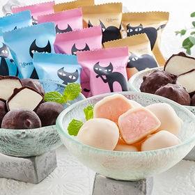 【3種/計40個】イーペルの猫祭り プチチョコアイス(A-E...